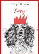 Dog Birthday Card - Springer Spaniel